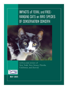 Image of Domestic and Feral Cats brochure.