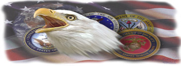 Eagle with logos of the services graphic.